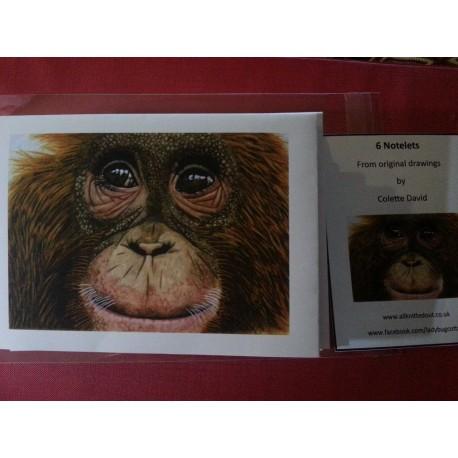 Pack of 6 Monkey Notelets