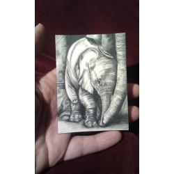 ACEO print of Giraffe