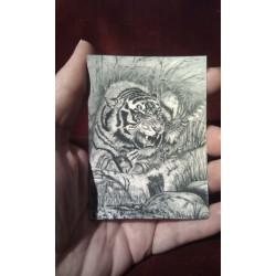 ACEO print of a Tiger Cub